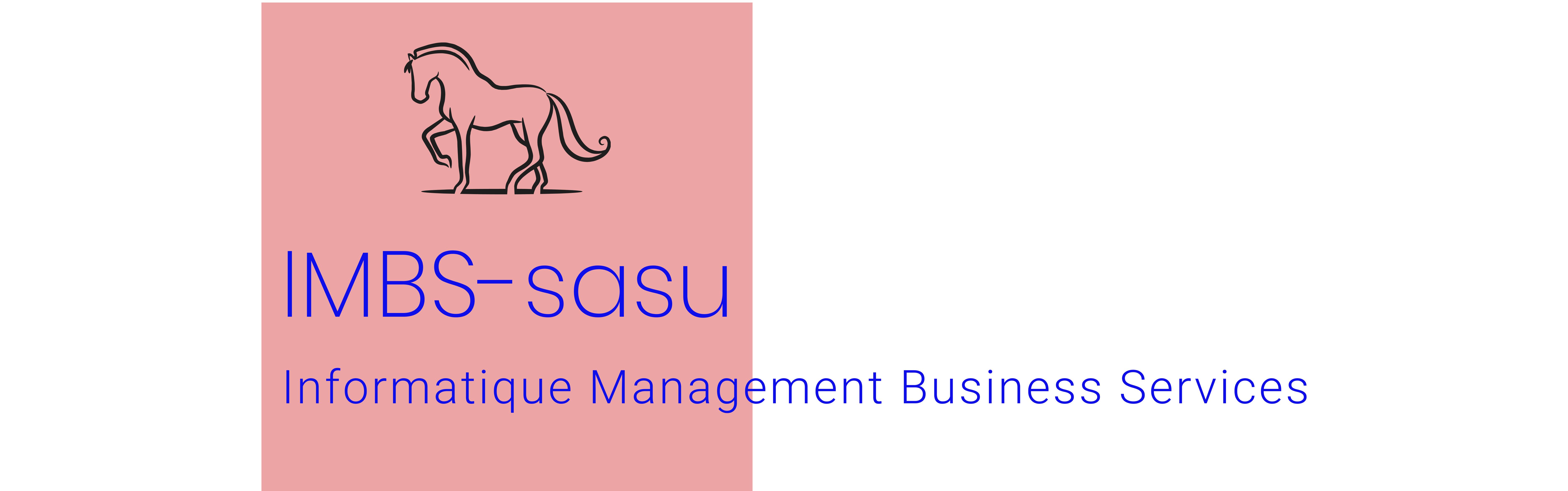 IMBS-SASU